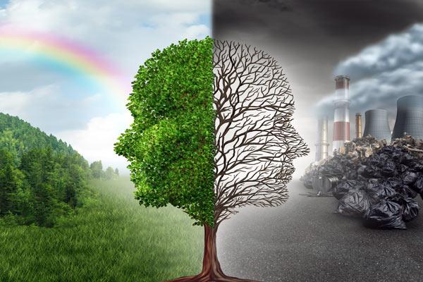 Международное право - международное экологическое право