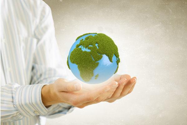 Принципы международного экологического права  Принципы международного экологического права