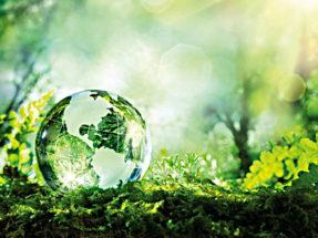 Международное экологическое право
